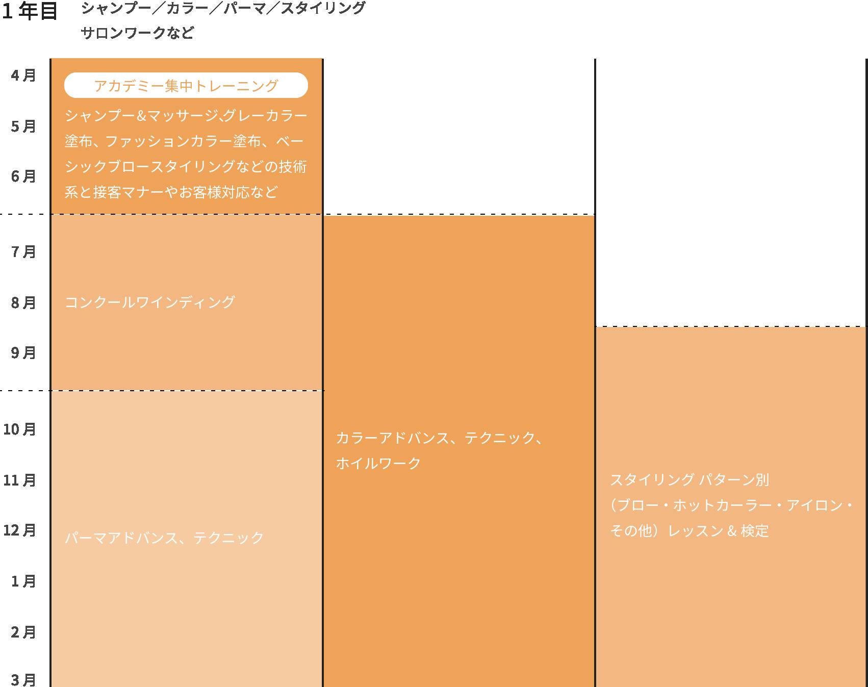 1年目 シャンプー/カラー/パーマ/スタイリング/サロンワークなど